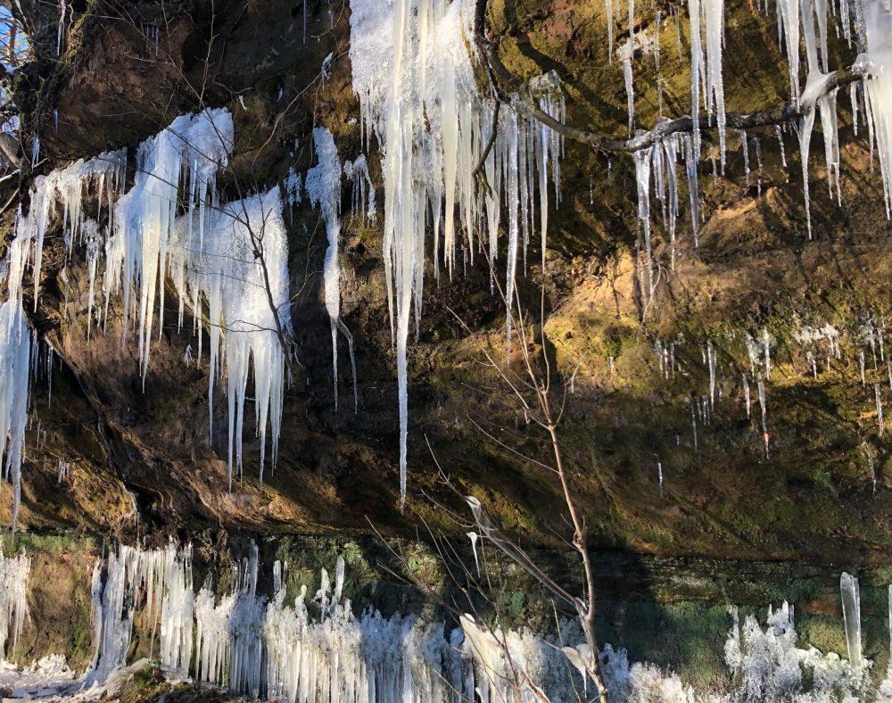 Zahlreiche Eiszapfen am unteren Teil des Gesteins