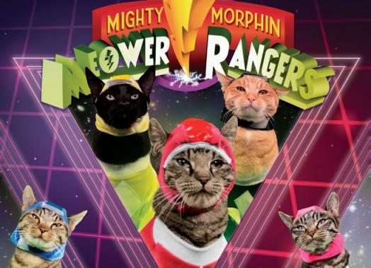 Meower Rangers Book Revealed