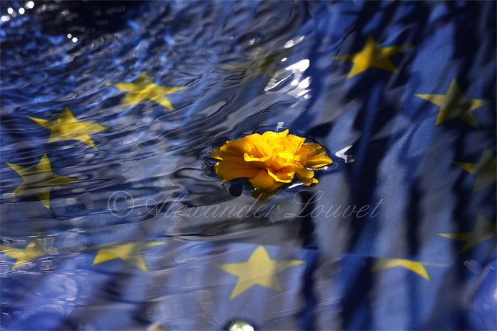 "Photo ""EU Touch"" 70x50"