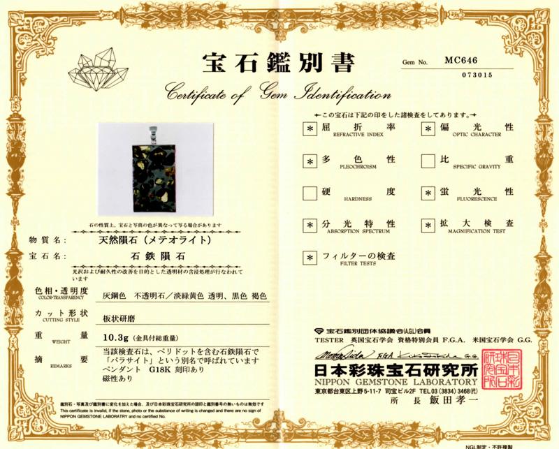 パラサイト隕石鑑別書