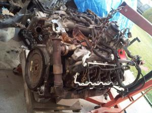 My 2006 Powerstroke 60 engine rebuild thread and lots pics  Ford Powerstroke Diesel Forum