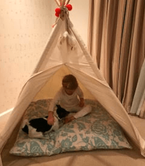 Teepee Testimonial from UK