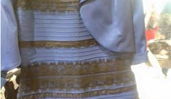 The lesson from the dress color debate that every journalist needs to know