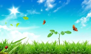 free-natural-scenery-three-ladybirds-flying-the-grass_461152
