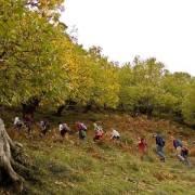 """""""Bobovac 2014"""" – Kakanj: Veliki broj građana na planinarskom pohodu"""