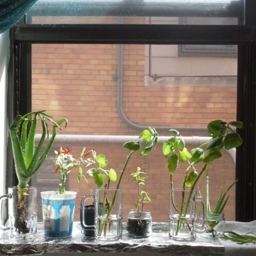genijalne-ideje-za-vrt-u-malom_uredjenje-doma-07-600x600