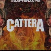 Cattera