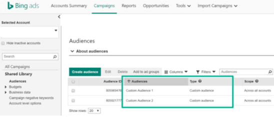 Bing Custom Audiences