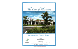 2018 Fiscal Year Citizens' Report (Dennis Conklin)
