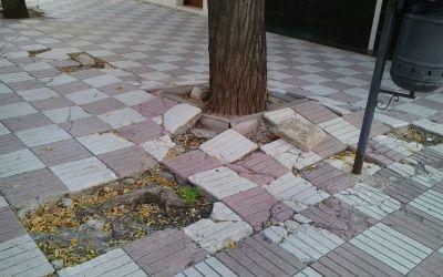 El Partit Popular sol·licita al Govern de Compromís que repare les voreres alçades pels arbres en els Sequers, repare desperfectes en la via pública i incremente la presència policial en la zona