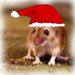 WeihnachtenMaeuseBrittaKarina.jpg