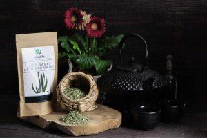 Babka-lancetowata-liść-Karta-produktu-Pracownia-ziół-i-zdrowej-żywności-Rebalife