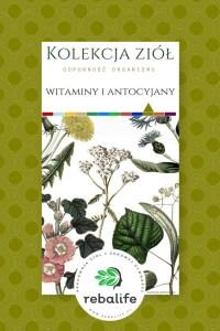 zioła na wzmocnienie organizmu witaminy i antocyjany etykiety, mieszanki ziołowe, rebalife Karta produktu Pracownia ziół i zdrowej żywności Rebalife-14