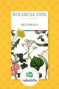 zioła na niedokwasotę etykiety, mieszanki ziołowe, rebalife Karta produktu Pracownia ziół i zdrowej żywności Rebalife-16