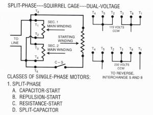 Dual Voltage Motor Wiring Single Phase  impremedia