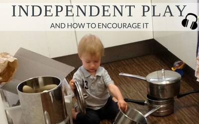 PRP012: Independent Play and How to Encourage it