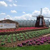 Business Management for Metrolina