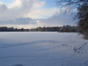 bolam-snow-small