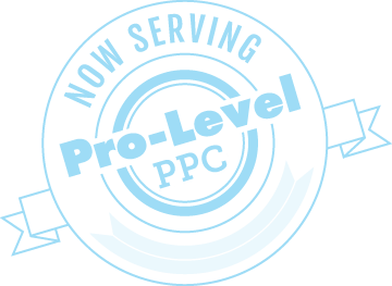 serving-professional-ppc