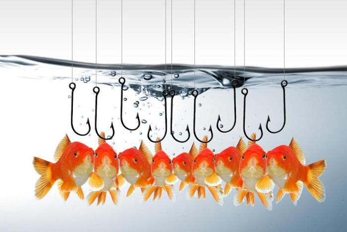 Six tips to avoid phishing attacks