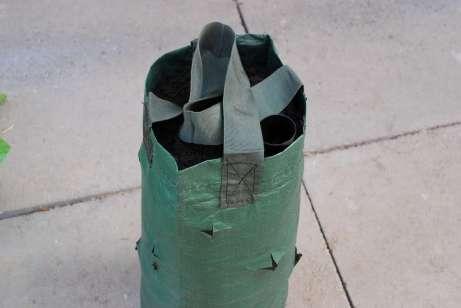 Kvetinová tuba so substrátom a závlahovou trubicou