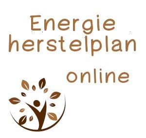 Het Energieherstelplan – online