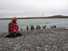 23 pinguinos en Puerto Deseado