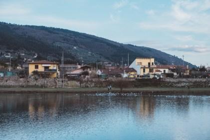 Lungo il fiume Bisenzio (foto: Agnese Morganti).
