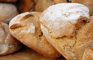 pane terra di prato