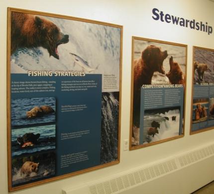 Stewardship Wall