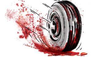 मेघालय में बस के खाई में गिरने से 30 की मौत