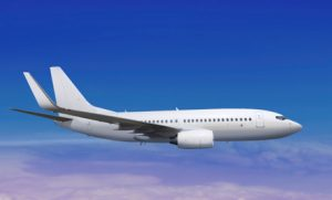 एयर इंडिया के विमान से पक्षी टकराया