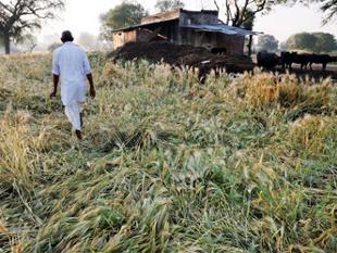pm-modi-announces-higher-aid-for-rain-affected-farmers