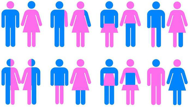 gender-bild