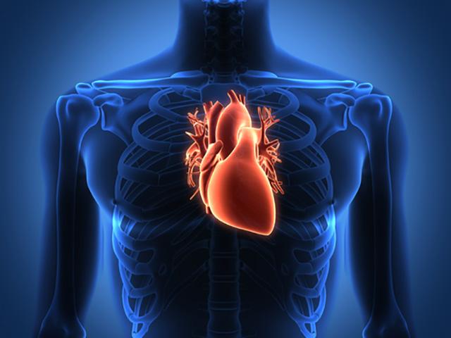 Wissenschaft bestätigt: Herzkohärenz – Sie können Ihre Genetik ...