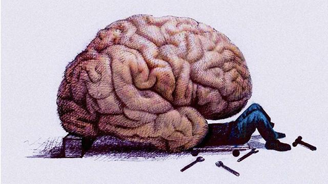 Neustart im Kopf: Wer sich jung fühlt, hat ein Gehirn, das langsamer ...