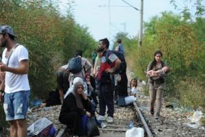 26082015101137_migranti-banskoliev (10)