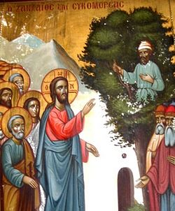 Image result for zacchaeus