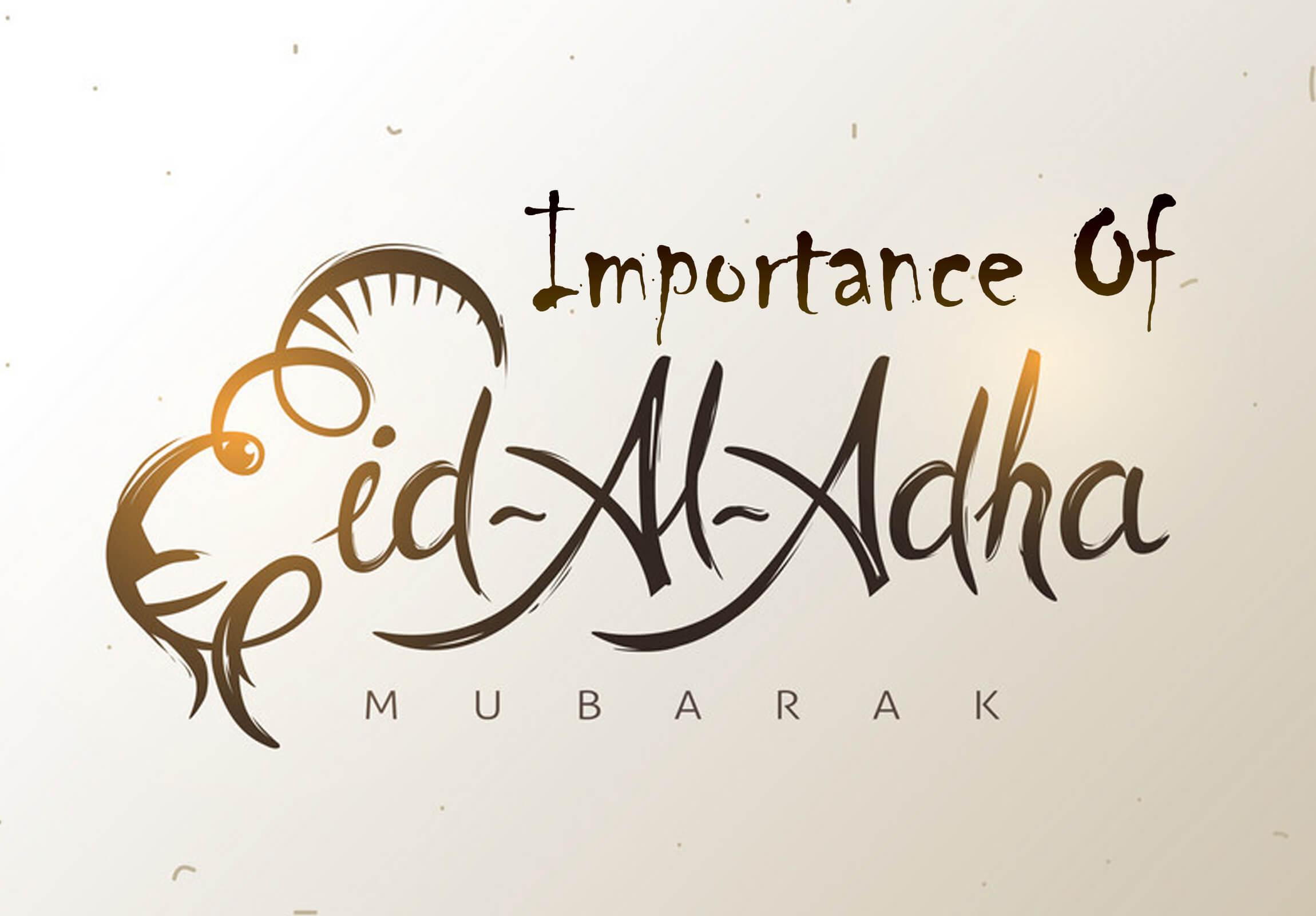 beautiful vector illustration image of eid al adha importance text