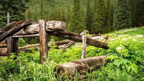 Shrine Pass, Colorado