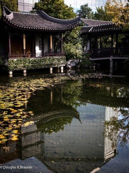 Chinese Gardens, Portland, Oregon