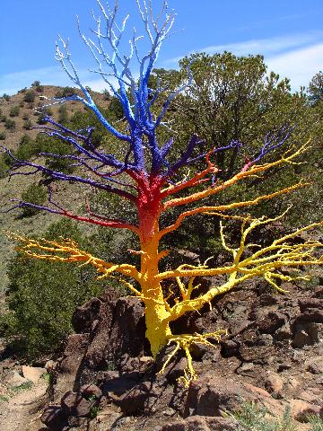 rainbow-tree-fx
