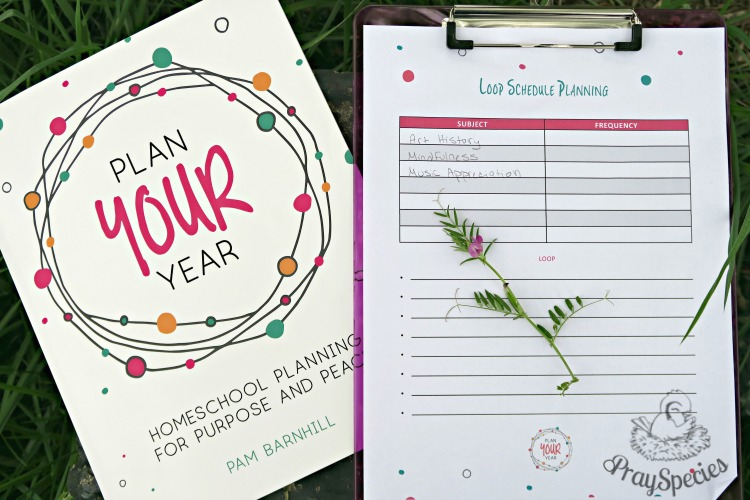 Does your homeschool plan work?