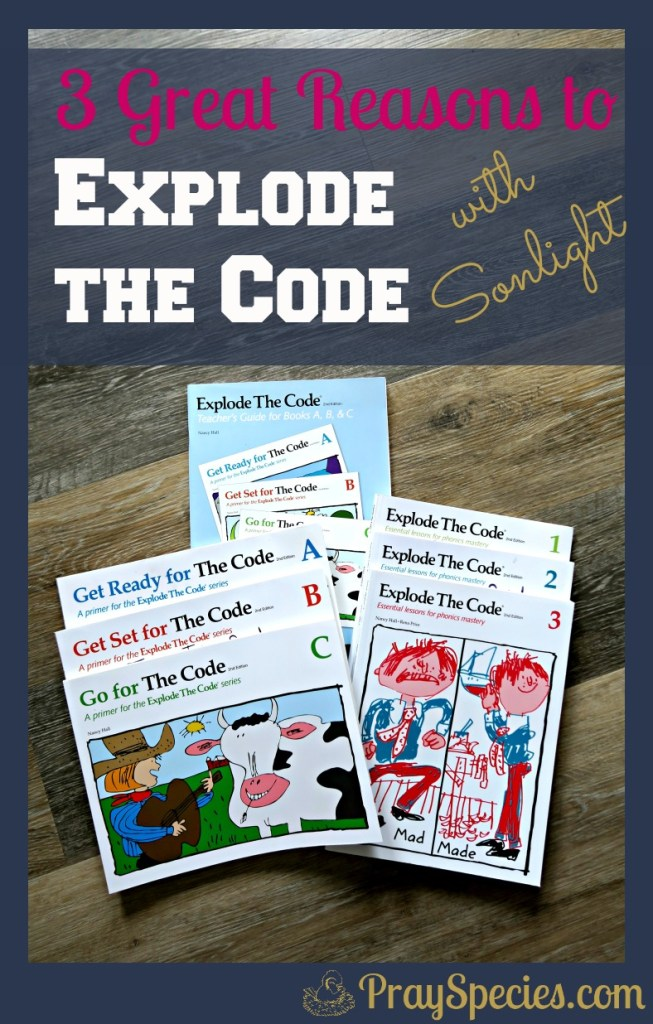 Explode the Code has been an awesome addition to our homeschool! It helps foster independence, builds confidence in reading fluency, and helps my kids realize they are accomplishing their goals!