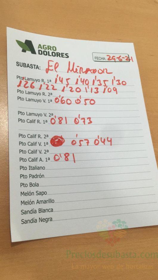 Subasta hortofrutícola Agrodolores El Mirador 29 de junio 2021