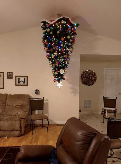 This image has an empty alt attribute; its file name is protecting-christmas-tree-from-dogs-cats-pets-32-585a7c76e2f18__605.jpg
