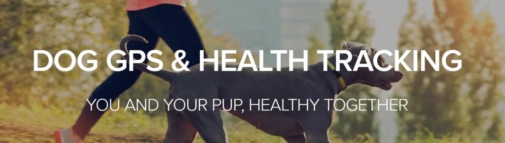 dog GPS and health tracker