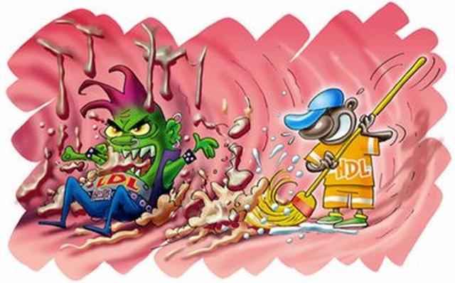Αποτέλεσμα εικόνας για χοληστερίνης