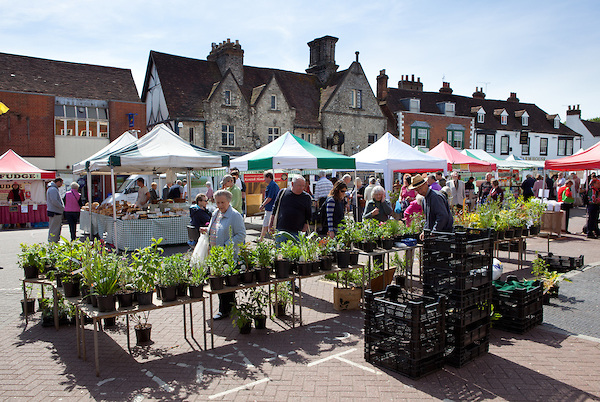 Plant stall at West Malling farmer's market Kent