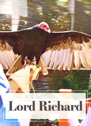 lord Richard